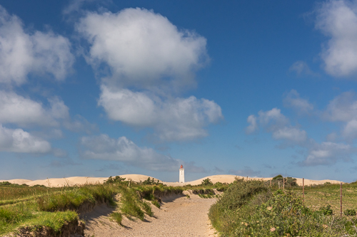 The sandy path leading to Rubjerg Knude Fyr (Lighthouse)