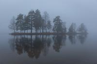 Foggy Sognsvann