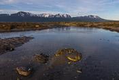 Kobbevågen nature reserve