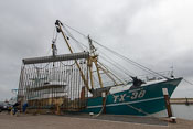 Fishing boat in the harbour of Oudeschild