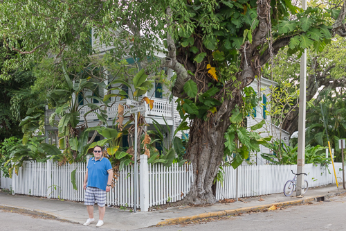 Fantastic houses in Key West