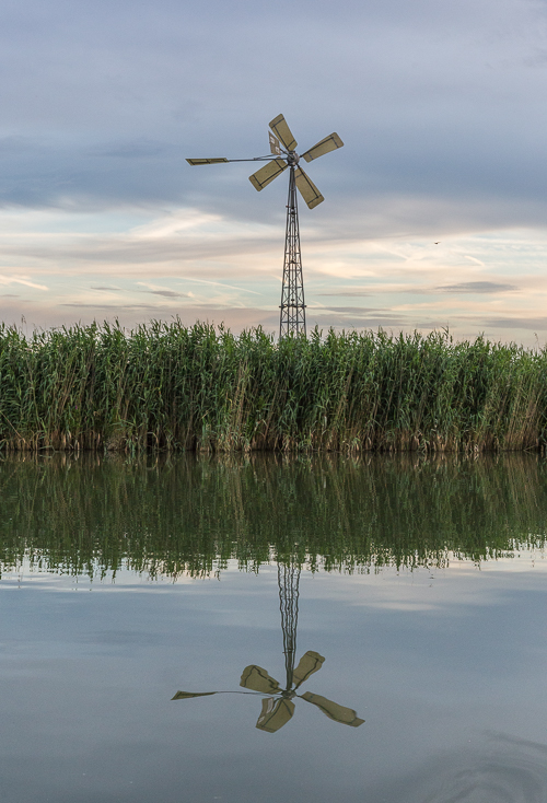 A reflected windmill