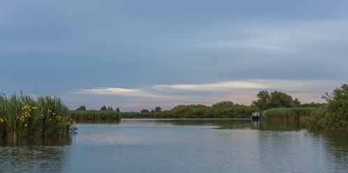 Soft evening colours