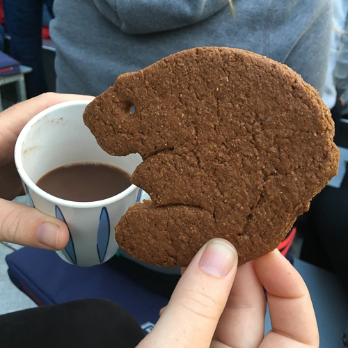 Cookies and hot chocolate - this beaver was easier to photograph than the real one!