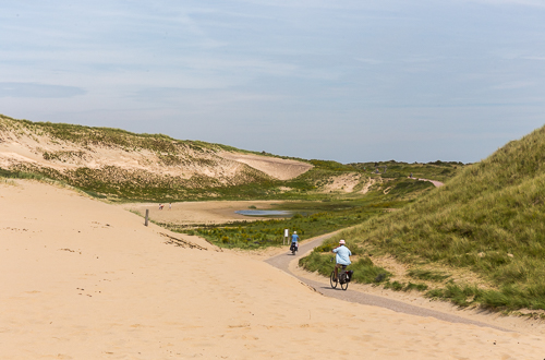 At this cycle path there is a sign that warns for dunes crossing the road ;)