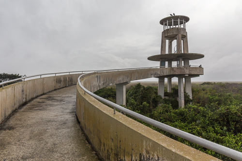 The Shark Valley Observation Tower