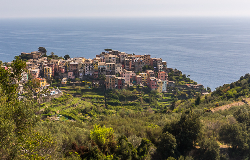 We walked between Corniglia and the next village (Vernazza), here looking back at Corniglia from above