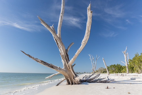 The Beach at Lovers Key State Park