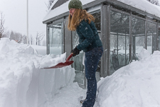 We have a brand new bike shed at work, but clearing a path to it took half an hour!