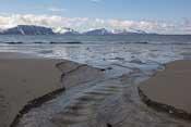 The beach at Sandbukta
