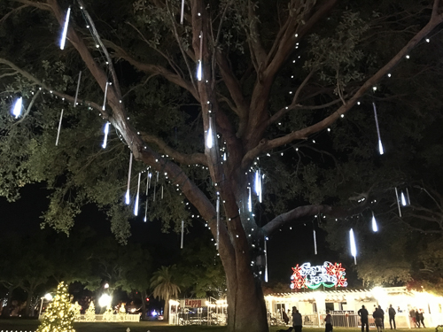 Christmas decorations and even some sort of ice rink in St Pete
