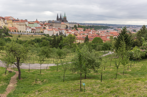 Nice green views over Prague