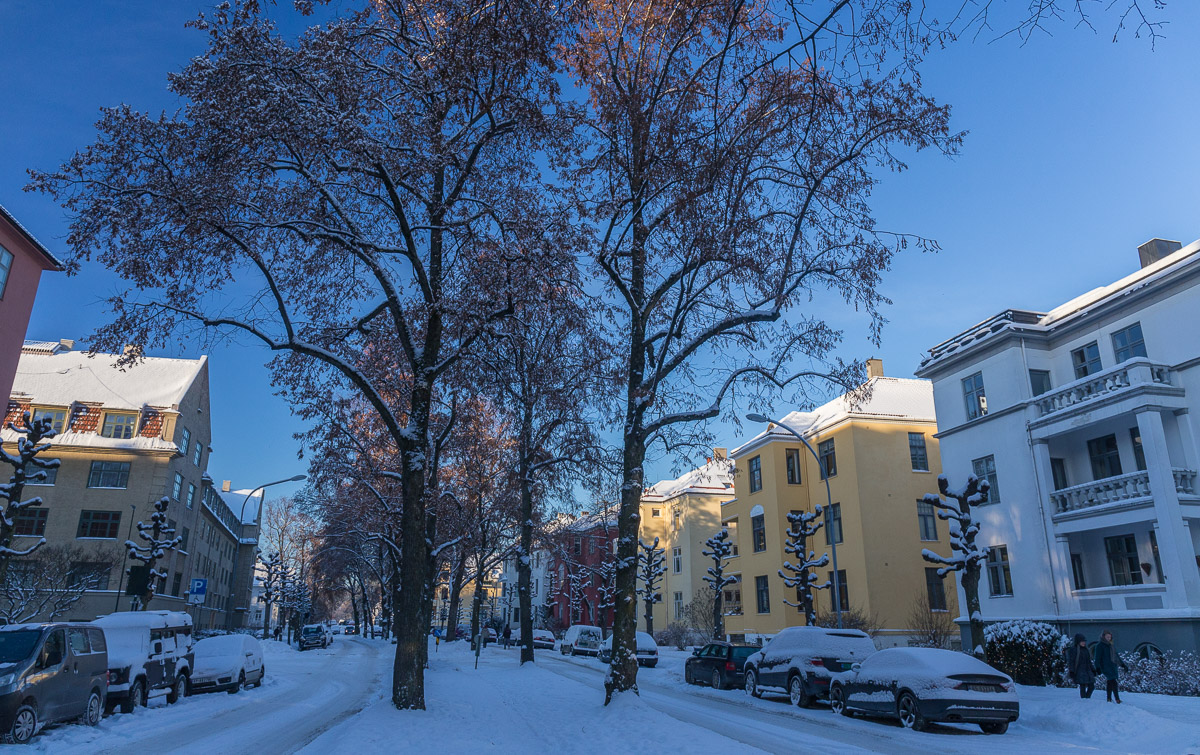 Snow in Oslo – Rotterdam (or Anywhere)