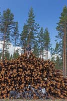 No lack of wood in Finland :)