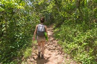 Marie walking through the jungle