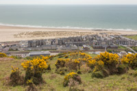 Looking down at Barmouth and the beach, from the broom covered hillside