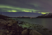 Aurora reflected in the fjord