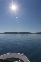 View from the ferry - what a beautiful day!