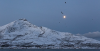 Leaving Tromvik early in the morning, in the moonlight