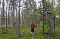 Hiking in Älänne, a small nature reserve only 5 km from our cabin