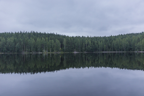 Mirror reflections in the evening - we saw a beaver and a loon family that evening
