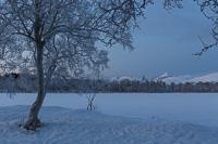 View of frozen Prestvannet