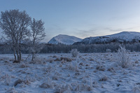 View towards Tromsdalstinden