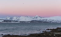 Beautiful pink sky over Kvaløya on my way to Sørtinden