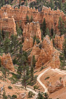 The path winding between the hoodoos