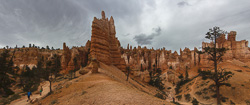 Panorama of Bryce Canyon under threatening skies