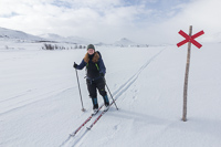 In Sweden, the winter routes are marked with crosses like this
