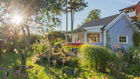 Another photo of the rainbow cottage and its garden