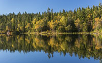 Autumn colours at Fagervann