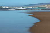 I went for a walk on the beach in the Oregon Dunes area - I just love these wide beaches!