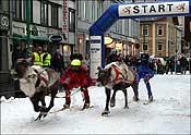 Reindeer Races Tromso 2008