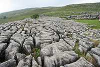 Indrukwekkend limestone pavement!